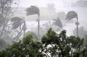 Strong wind and rain from Cyclone Debbie is seen effecting trees at Airlie Beach, located south of the northern Australian city of Townsville, March 28, 2017. AAP/Dan Peled/via REUTERS